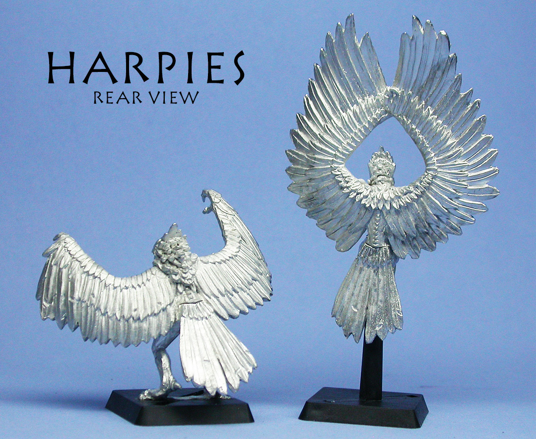 Harpies rear
